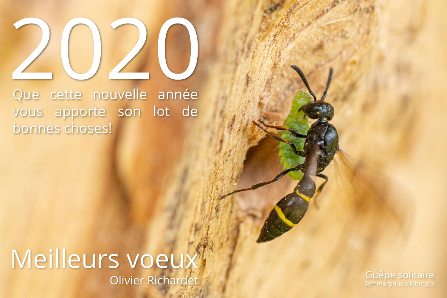 voeux_2020